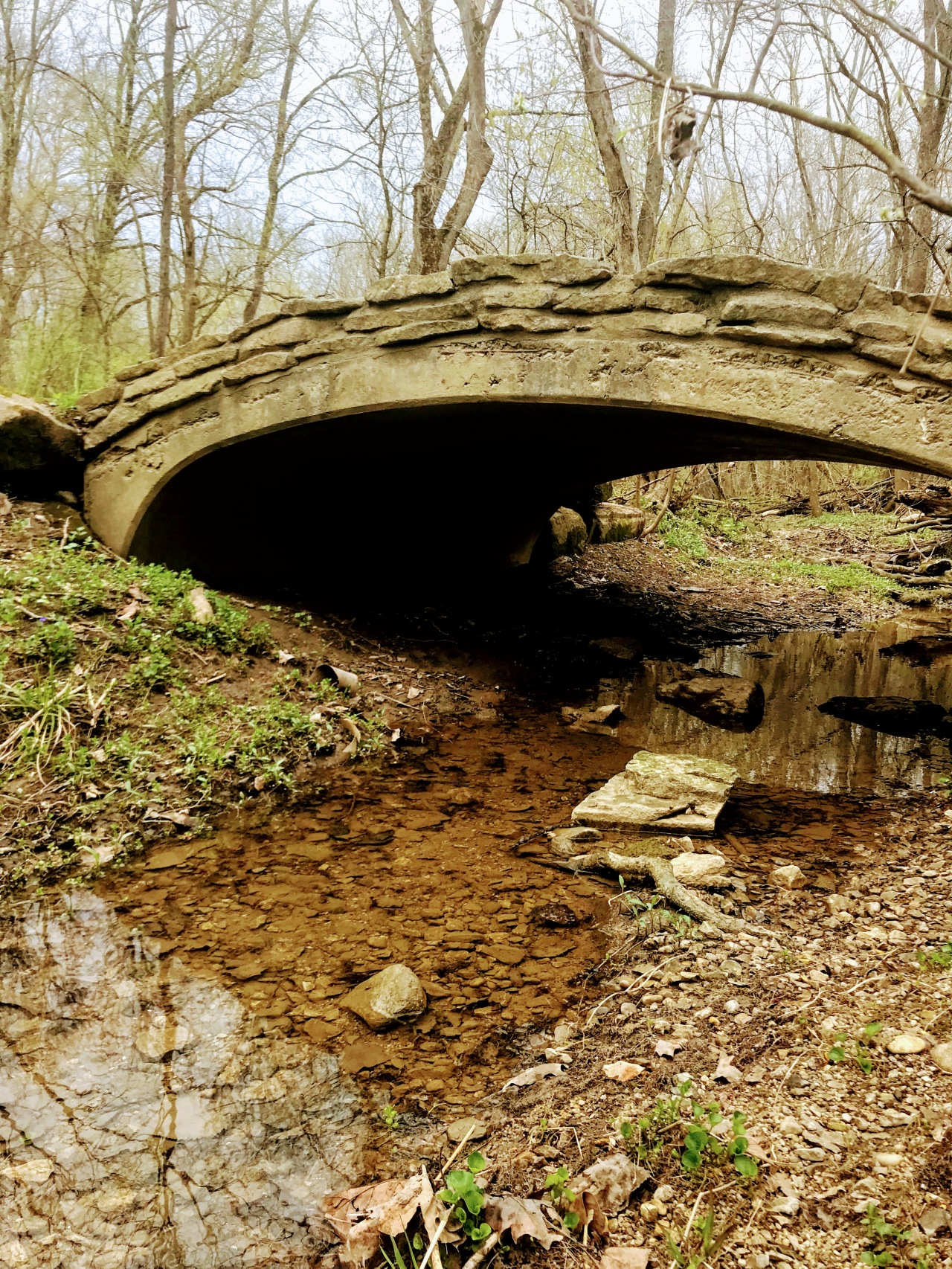 bridge with a creek